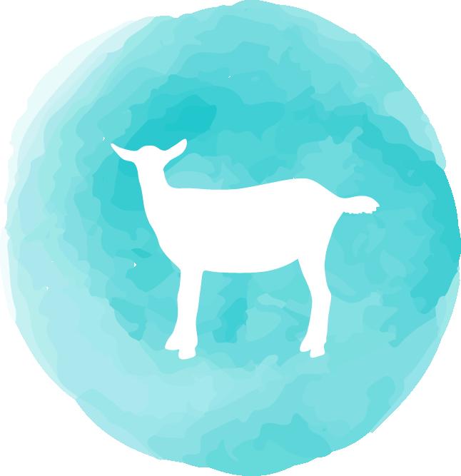 Goat Yoga Tampa icon